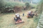 Prevenzione del dissesto idrogeologico, lavori di bonifica lungo il fiume Busento