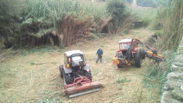 lavori fiume busento, Carmine Vizza, Cosenza, Calabria, Politica