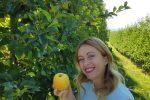La mela della Meloni e altri... tipici luoghi comuni