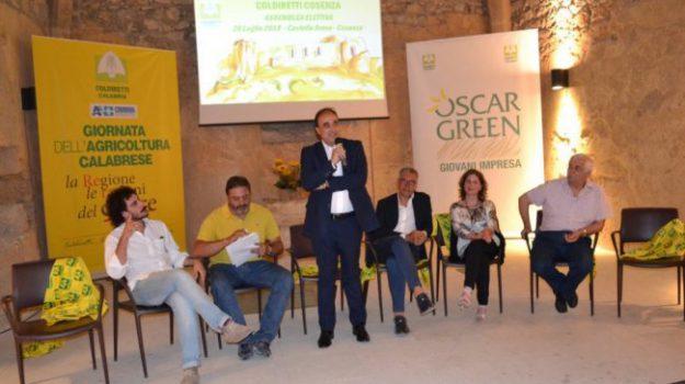 premio creatività coldiretti, Glauco Gallo, Cosenza, Calabria, Economia