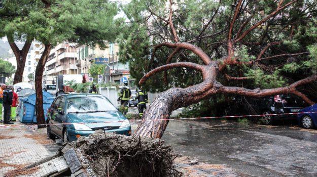 maltempo, meteo, regione siciliana, Nello Musumeci, Sicilia, Cronaca