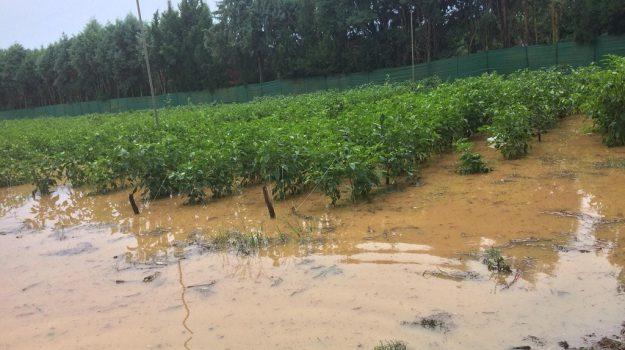 aree rischio calabria, confagricoltura calabria, rischio idrogeologico, Alberto Statti, Calabria, Cronaca