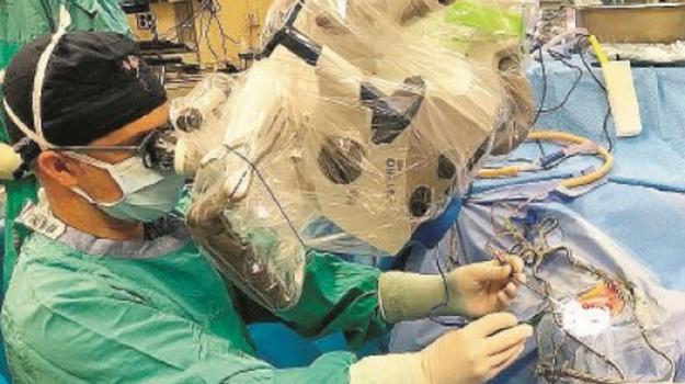 neurochirurgo san marco d'alunzio, Stefano Priola, Messina, Sicilia, Società