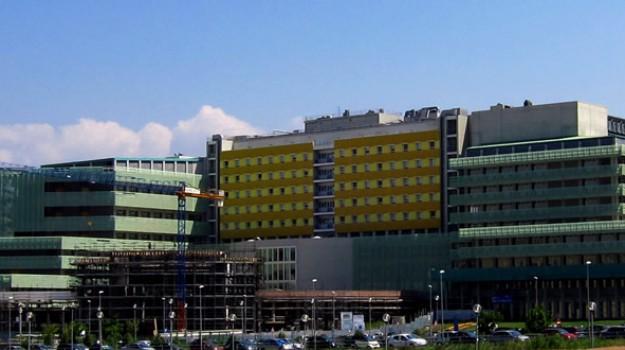 test di medicina, università di catanzaro, Catanzaro, Calabria, Cronaca