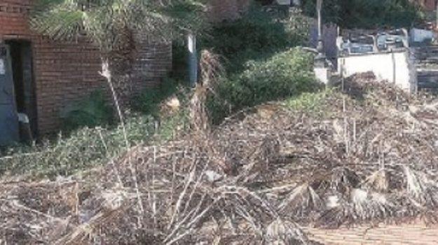 rifiuti villa margherita catanzaro, Domenico Cavallaro, Catanzaro, Calabria, Cronaca