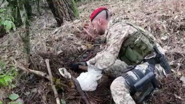 armi Locride, carabinieri Locri, locri, platì, Reggio, Calabria, Cronaca