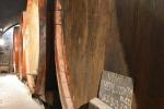 Autunno al MUVIS, il Museo del Vino pi grande d?Europa
