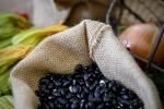 Legumi italiani in ripresa, ma 98% lenticchie sono importate
