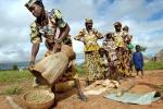 Agricoltura, al via programma Ue-Africa su innovazione