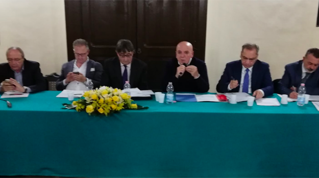 parco del pollino, Domenico Pappaterra, Cosenza, Calabria, Politica