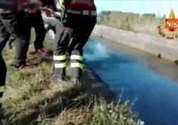 Sono intervenuti con tecniche speleo alpino fluviali