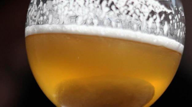 birra, food, Terra e Gusto