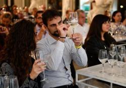 Dalla birra alle bollicine, a Cibo a Regola d'Arte si impara a degustare