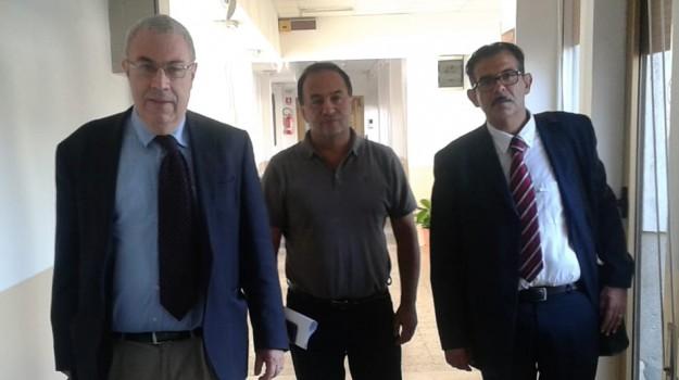 processo xenia, Domenico Lucano, Reggio, Cronaca