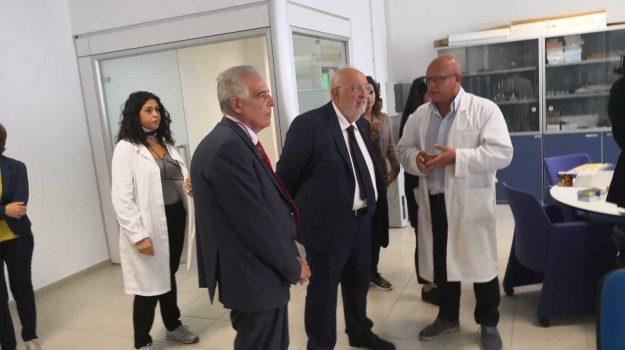 protocollo controlli qualità calabria, Gino Mirocle Crisci, Calabria, Economia