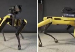 Il «cane» della Boston Dynamics in commercio nel 2019
