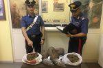 Cinque chili di marijuana sull'auto, tre donne del Ragusano arrestate a Rocca Imperiale