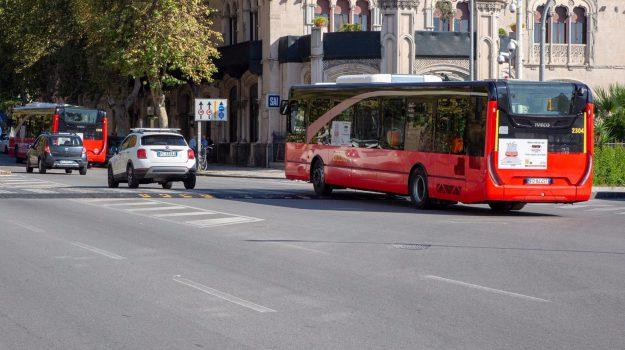 bus ellettrici messina, Messina, Sicilia, Cronaca