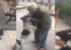 """Un 62enne georgiano aveva perso il suo amato cane """"Jorge"""" nel 2015"""