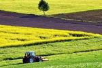 Gioia Tauro, la Fiera agricola compie tre anni e cresce ancora