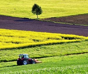 Agricoltura (fonte: Pixabay)
