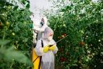 Commissione Ue, ridurre l'esposizione dei cittadini europei alle sostanze chimiche con proprietà nocive