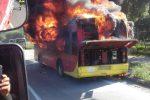 Autobus di linea prende fuoco lungo la strada per Catanzaro, salvo il conducente: le foto