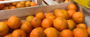 Gli agrumi calabresi spopolano nei mercati di Campagna Amica