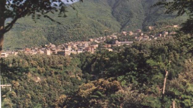 delianuova, infiltrazioni mafiose, ndrangheta, Reggio, Calabria, Cronaca