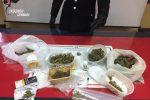Montepaone, aveva occultato la droga nel frigo: arrestato 40enne