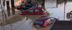 Piogge nel Cosentino, il Crati fa paura: famiglie in fuga, animali uccisi e treni bloccati