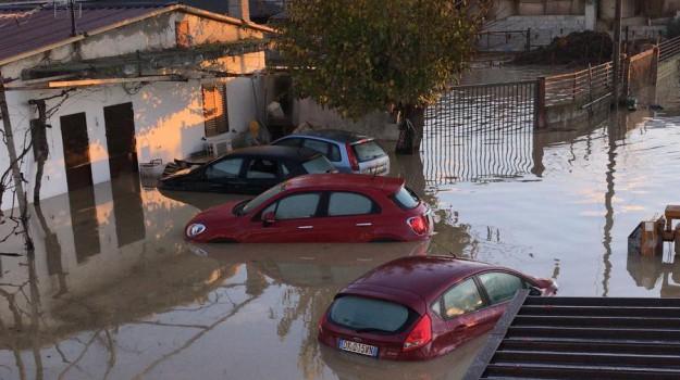 esondazione Crati, Cosenza, Calabria, Cronaca