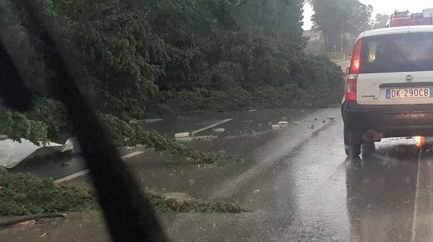 alluvioni in Calabria, stato di emergenza Calabria, Calabria, Cronaca