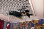 """Una """"rivoluzione"""" per l'Aula Consiliare di Catanzaro, ipotesi di spesa per 800mila euro"""
