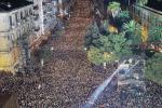 Il Capodanno itinerante di Cosenza, nei prossimi giorni la presentazione