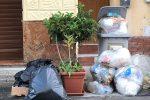 Raccolta a rilento e rifiuti per strada: le foto dell'emergenza a Palermo