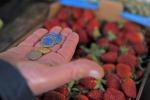 Prezzi in aumento per cibi e bevande, balzo per le verdure: +18,5%