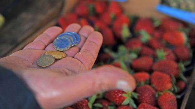 alimenti, inflazione, prezzi, Sicilia, Economia