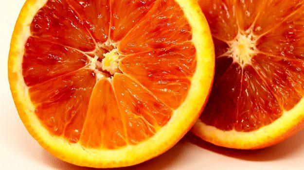 sagra arancia ribera winter, Carmelo Pace, Giuseppe Pasciuta, Sicilia, Economia