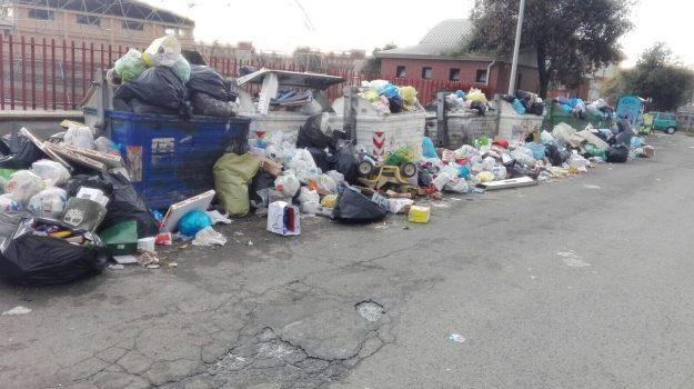 rifiuti lamezia terme, Catanzaro, Calabria, Cronaca