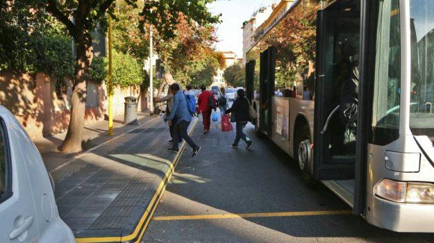 bus, nuovi, trasporti, vibo, Sergio Aiello, Catanzaro, Calabria, Cronaca