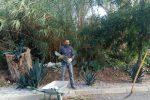 A Tropea un sindaco dal pollice verde: Giovanni Macrì si improvvisa giardiniere