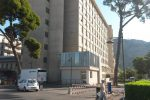 Palermo, colpito da una cavalla durante il parto: muore un anziano, grave il figlio