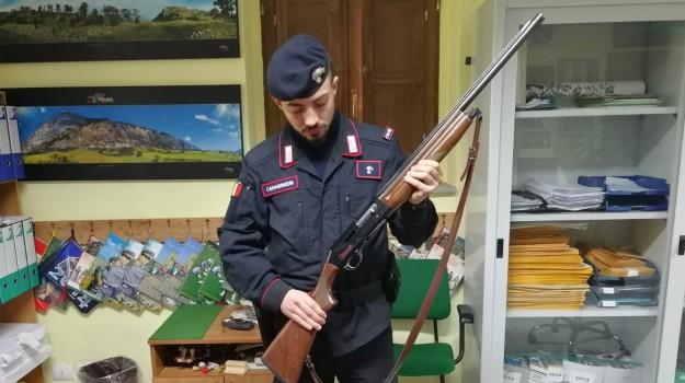 autorizzazione, caccia, cosenza, fucile, parco del pollino, Cosenza, Calabria, Cronaca