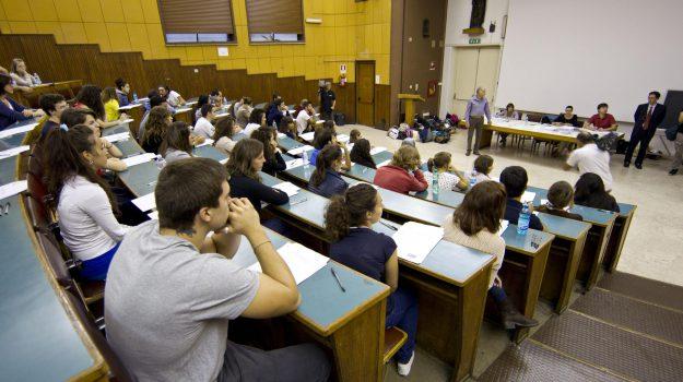 cgil, tasse, università, AngeloSposato, Calabria, Economia