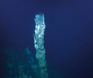 La nuova corrente idrotermale Jaich Maa (fonte: Schmidt Ocean Institute)