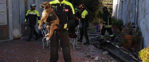 Il salvataggio dei tre cuccioli
