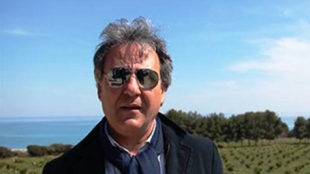 precari calabria, protesta lsu-lpu, sindaco amendolara, salvatore antonio ciminelli, Cosenza, Calabria, Politica