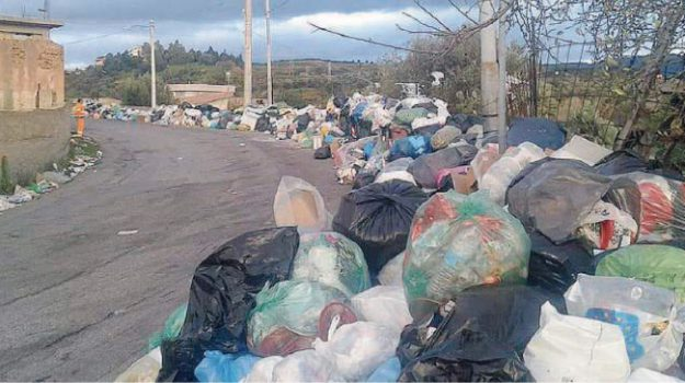 rifiuti reggio, tari reggio, Reggio, Calabria, Cronaca