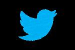 Novità in casa Twitter: ora sarà possibile tornare all'ordine cronologico dei cinguettii